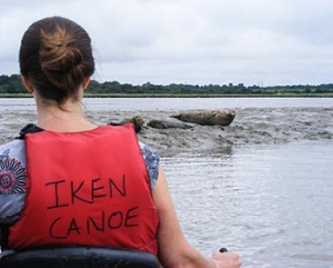 Seals at Iken - Image from Iken Canoe Hire