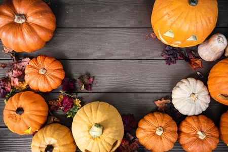 What's on in Suffolk in October